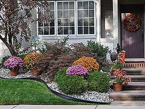 Curb Appeal - Love At First Sight